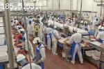 Фабрика за телешко месо
